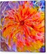 Rainbow Coronal Canvas Print