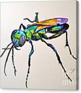 Rainbow Insect Canvas Print
