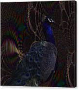 Rainbow Peacock Fractal Canvas Print