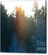 Rainbow Sparkles Canvas Print