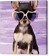 Rainbow Sunglasses Canvas Print