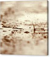 Raindrop Falling On The Street Canvas Print