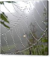 Raindrop Pearls In Fog Canvas Print