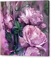 Raindrops On Pink Roses Canvas Print