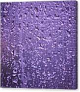 Raindrops On Window II Canvas Print