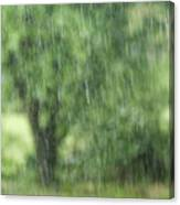 Rainfall Canvas Print