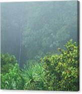 Rainforest And Lower Puohokamoa Falls Maui Hawaii Canvas Print