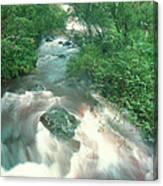 Rainforest Cascade Near Hana Maui Hawaii Canvas Print