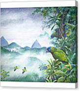 Rainforest Realm - St. Lucia Parrots Canvas Print