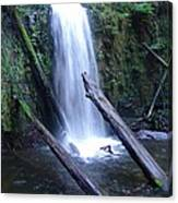 Rainforest Run Off Canvas Print