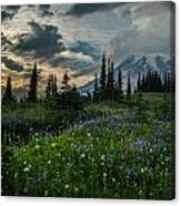 Rainier Abundance Of Flowers Canvas Print