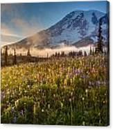 Rainier Golden Sunlit Meadows Canvas Print