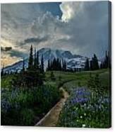Rainier Meadows Thunder Skies Canvas Print