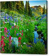 Rainier Wildflower Creek Canvas Print