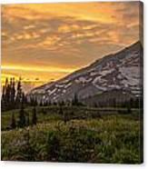 Rainier Wildflowers Meadow Sunset Canvas Print