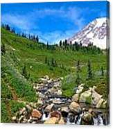 Rainier's Meadows Canvas Print