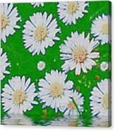 Raining White Flower Power Canvas Print
