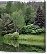 Rainy Day At The Pond Canvas Print