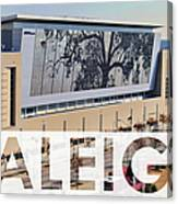 Raleigh At The Shimmer Tree Canvas Print
