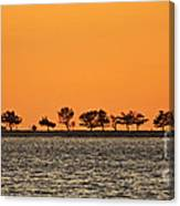 Ram Island Canvas Print