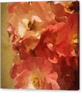 Ramblin Rose Memories Canvas Print