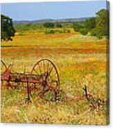 Ranch And Wildflowers And Old Implement 2am-110547 Canvas Print