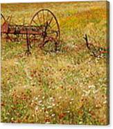 Ranch And Wildflowers And Old Implement 2am-110546 Canvas Print
