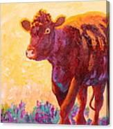 Ranch Hand Canvas Print