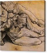 Raphael's Drawing Canvas Print
