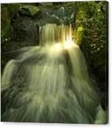 Rapid Waterfall Canvas Print