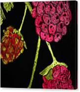 Raspberry Fabric Canvas Print