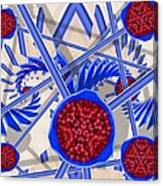 Raspberry Regime Canvas Print