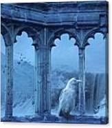 Raven Of Winter Canvas Print