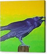 Raven Singing Canvas Print