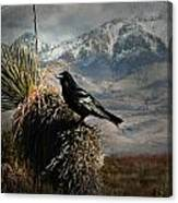 Raven Storm Canvas Print