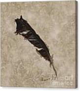 Raven's Gift Canvas Print