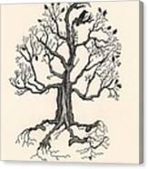 Raven's Magic Oak Canvas Print