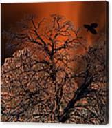 Ravens Tree Canvas Print