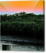 Rays Of Days Canvas Print