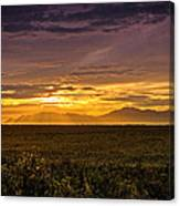 Rays Of Hope  Canvas Print