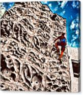 Reaching A Climbmax Canvas Print