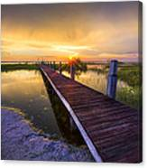 Reaching Into Sunset Canvas Print