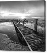 Reaching Into Sunset In Black And White Canvas Print