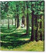 Reader In The Park Canvas Print