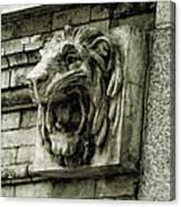 Reading Lion Canvas Print
