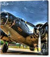 Ready For Takeoff 3 Canvas Print