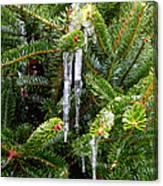 Real Christmas Icicles Canvas Print