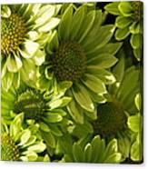 Real Green Flowers Canvas Print