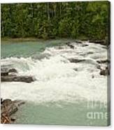 Rearguard Falls Of The Fraser River Canvas Print