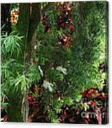 Red And Green Foliage Canvas Print
